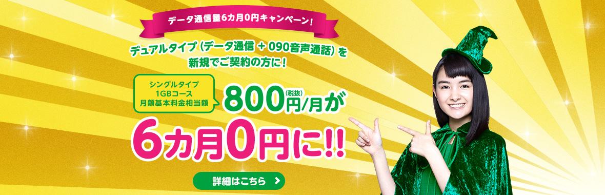 mineo【格安SIMガイド】キャンペーン充実・評判・料金・iPhone・APN設定・解約方法・速度についても解説(マイネオ)