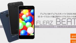 FLEAZ BEAT発売!低性能だがDSDS対応・バッテリー交換可能・独立式microSDスロットを持つ【CP-W5】Covia